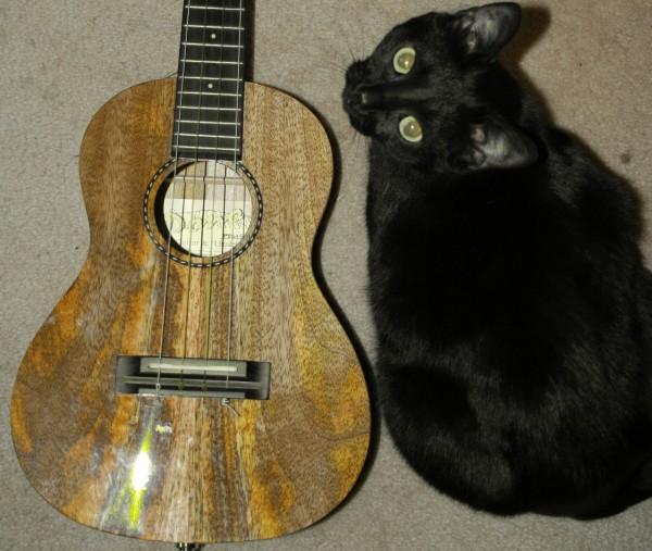 http://www.ianchadwick.com/essays/ukulele/pono_mango_cat_02.jpg